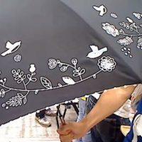 ミニラボの日傘