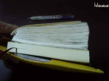 ほぼ日手帳に文庫ノートをセット