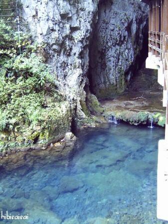 秋芳洞入り口の水の流れ