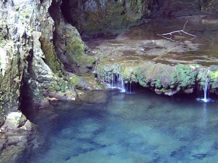 秋芳洞の洞内から流れ出てくる水