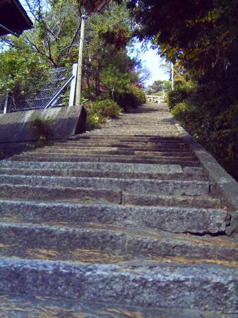 熊野神社 階段