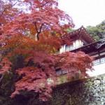 箕面の紅葉 晩秋景色アラカルト