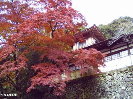 瀧安寺と紅葉