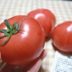 四銃士トマト