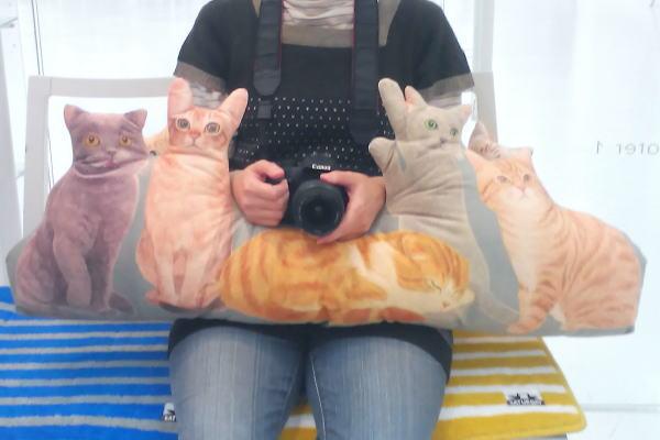 猫クッションに挟まれてみた