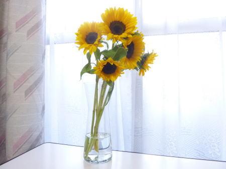 花瓶とひまわり