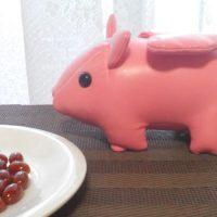 豚のイメージとプラセンタ