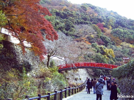 瑞雲橋と紅葉