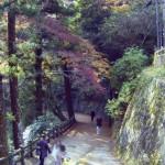 晩秋の滝道2 山深い風景を楽しむ