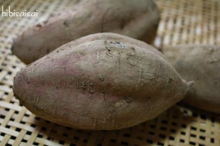 土付きの安納蜜芋