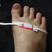 足囲を測る