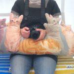 猫が大好きなのに一緒に暮らせない… そんな切ない人におすすめ!至福のネコまみれクッション