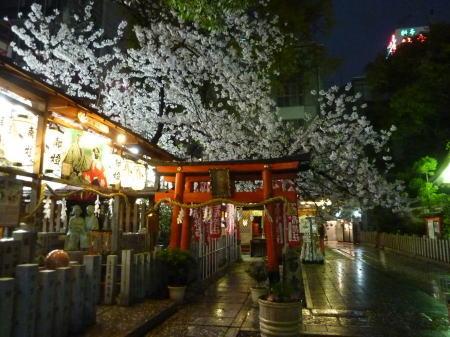 玉津稲荷の桜