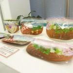 神戸の空気を伝えるおしゃれな生活雑貨 フェリシモのチャック付きバック