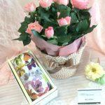 母の日シーズンにお花と贈る新茶の贈り物