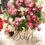 イイハナの母の日 かわいい花鉢で選ぶなら、ミニバラリースがおすすめ