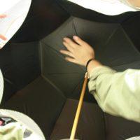 傘の裏側から見たところ